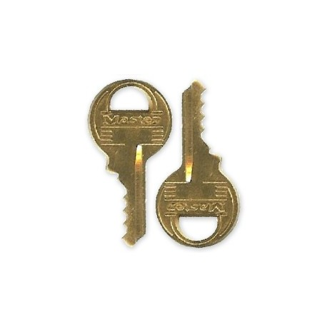Master Lock Cut Key