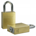 """Paclock LFIC-Y6 Brass 6-Pin Padlock, Shackle Material - Hardened Steel, Shackle Spread Inside - 25/32"""", Compatible w/ Yale and Medeco"""