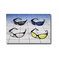 Dolphin Safety Glasses