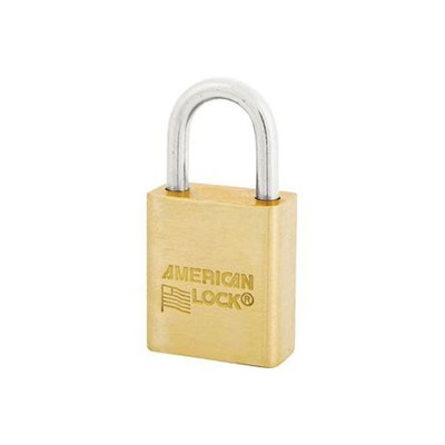 Government Padlock